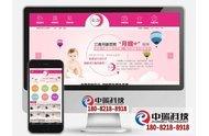 阜宁月嫂网站建设